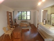 1 Maple Dr #1f Great Neck NY, 11021