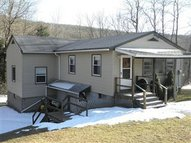 State Hwy. 206 Trout Creek NY, 13847