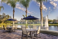 Lansbrook Village Apartments Palm Harbor FL, 34685