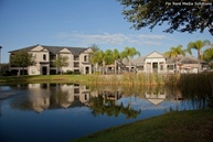 Enclave at Wiregrass, The Apartments Wesley Chapel FL, 33544