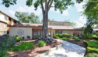 Arbour Ponds Apartments Tampa FL, 33607
