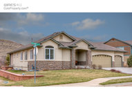302 Mcconnell Dr Lyons CO, 80540