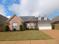 4223 Becky Sue Trail Olive Branch MS, 38654