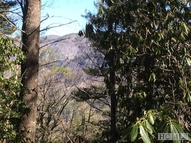 Lot 54 Ledgeview Road Cashiers NC, 28717