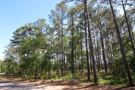 Ab - 48 Charnwood Forest Circle Aiken SC, 29803