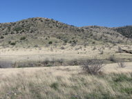Tract 13 Alamo Canyon Tinnie NM, 88351