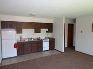 1011 State St. # 101117 River Falls WI, 54022