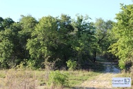 Tbd State Hwy 80 Gonzales TX, 78629