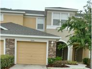 19206 Stone Hedge Dr Tampa FL, 33647