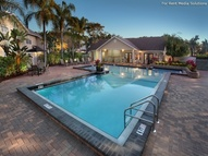 Madison Oaks at Palm Harbor Apartments Palm Harbor FL, 34684