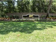 Valley Stream Dr Geneva FL, 32732