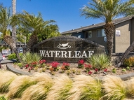 Waterleaf Apartment Homes Apartments Vista CA, 92083