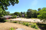 1016 Lake Avenue Greenwich CT, 06831