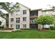 6810 Ridge Point Drive 3c Oak Forest IL, 60452