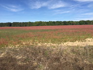 Lot 9 Browntown Subdivision Lot 9 Bishopville SC, 29010