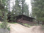 1011 Tenderfoot Tr. Red River NM, 87558