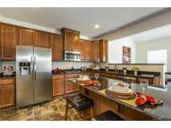 217 Stanhope Drive Fort Mill SC, 29715