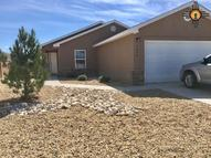 4809 W Dark Horse Hobbs NM, 88240