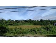 Lot 9 Haydenville Rd Whately MA, 01093