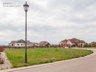 991 Terrace View St Timnath CO, 80547