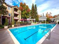 Saybrook Pointe Apartment Homes Apartments San Jose CA, 95123
