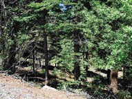 12461 Falcon Point Place Truckee CA, 96161
