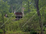 145 Flat Top Mountain Road Fairview NC, 28730
