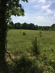 11 Acres Cr 3131 Gladewater TX, 75647