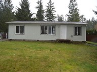 161 Ne Captain Hook Dr Belfair WA, 98528
