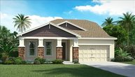 14321 Azalea Pond Ct Lithia FL, 33547