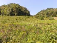 72 .68 Ac. South Fork Rd Whitleyville TN, 38588