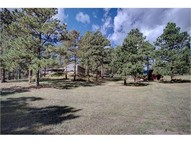 27633 Pine Valley Drive Evergreen CO, 80439