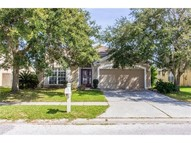 29631 Bright Ray Pl Wesley Chapel FL, 33543