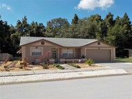 6216 Appomattox Dr Holiday FL, 34690