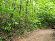 #16 Hollow Point Drive Fleetwood NC, 28626