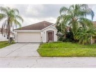 10519 Walker Vista Dr Riverview FL, 33569