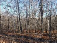 Lot 39 Deertrail  Dr Pineville MO, 64856