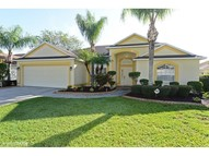 2302 Towering Oaks Cir Seffner FL, 33584