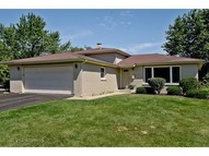 153 Waxwing Avenue Naperville IL, 60565