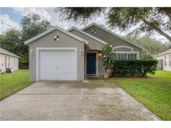 14909 Stag Creek Cir Lutz FL, 33559