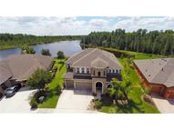 8226 Swiss Chard Cir Land O Lakes FL, 34637