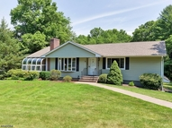 46 Old Stonehouse Rd Bedminster NJ, 07921