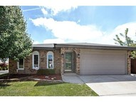 8853 167th Place Orland Hills IL, 60487