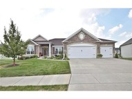 824 Evergreen Forest Drive Saint Peters MO, 63376