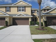 20204 Water Hickory Pl Tampa FL, 33647