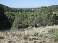 Tract B Fort Heron Preserve Rutheron NM, 87551