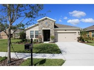 330 W Freesia Ct Deland FL, 32724