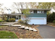 132 North Stough Street Hinsdale IL, 60521