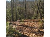 Lot 7r Shining Rock Path Lot 7r Horse Shoe NC, 28742