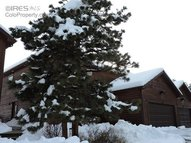 363 Virginia Dr Estes Park CO, 80517